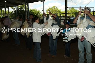 2015 LP Livestock Show