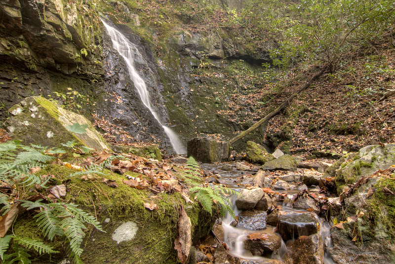 Water trickles down from Backbone Falls at the Backbone Rock Recreation Area in Shady Valley, TN on Friday, October 24, 2014. Copyright 2014 Jason Barnette