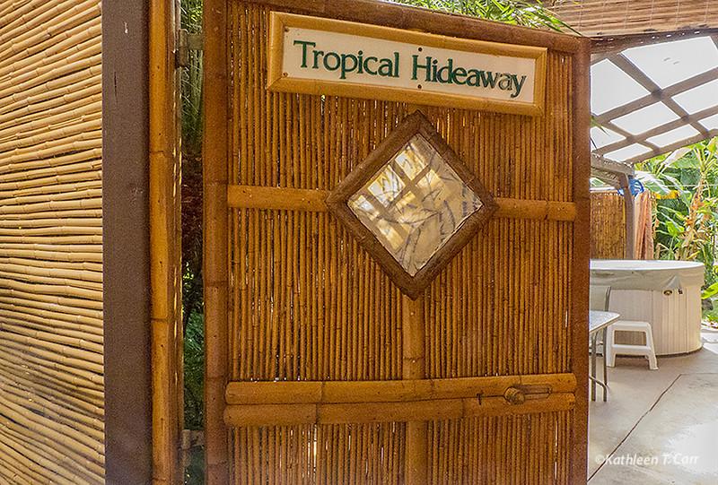 Entry gate 202.jpg