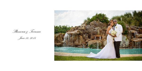 Shenerea and Terrence Wedding Album
