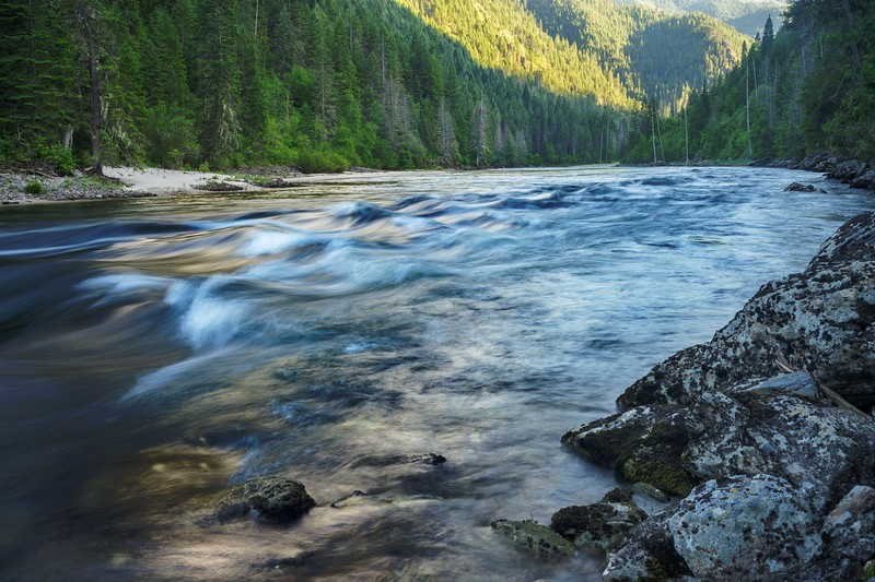 Selway River Afternoon Light and Rapid.jpg