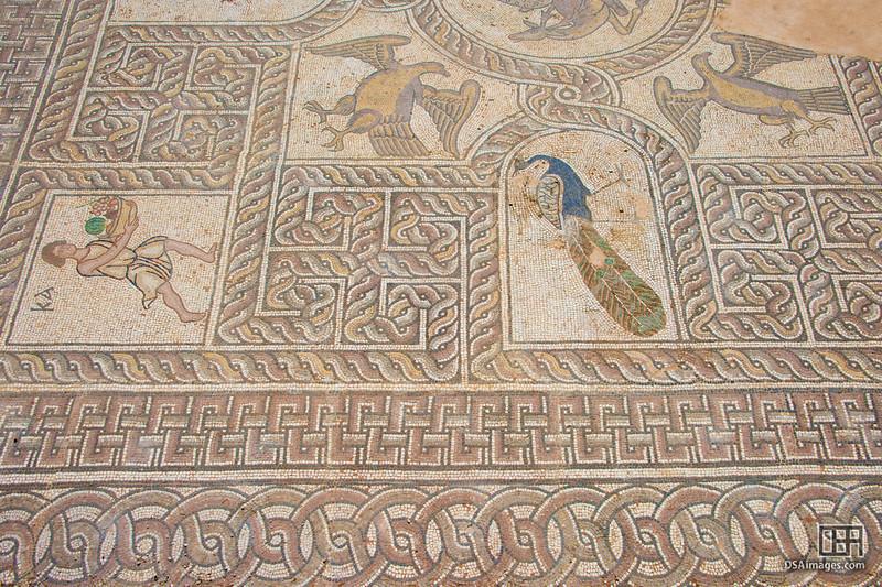 Near the Delphi Archaeological Museum, Greece