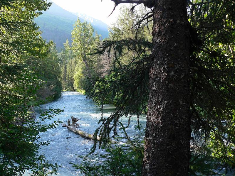 Ptarmigan Creek,  Lawing, Alaska