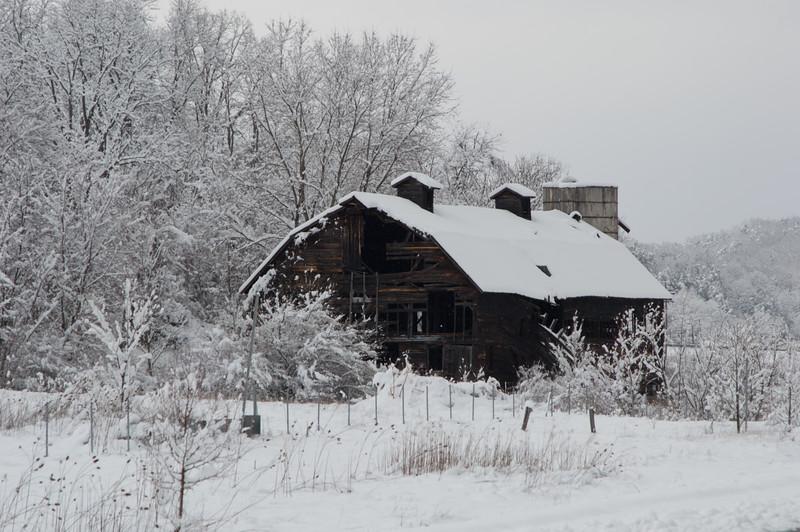 Winter.2017.March.LG.JPG-2537.jpg