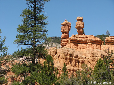 Red Canyon 2009