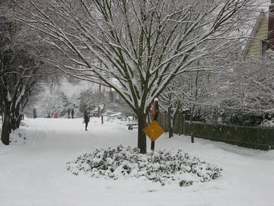 Snow pix