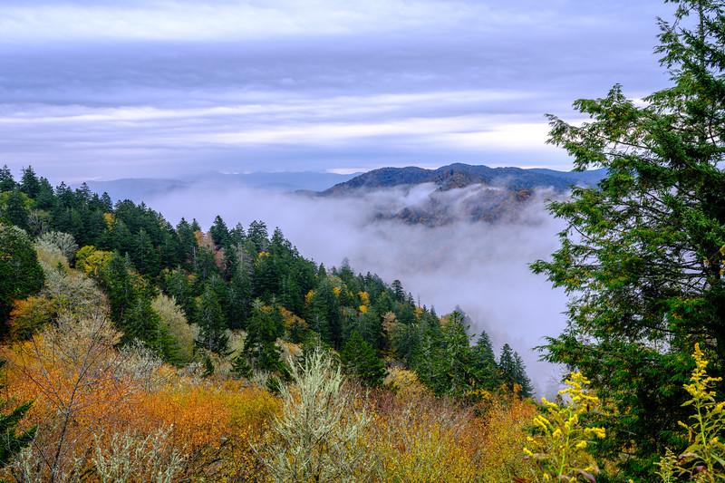 20201011_smoky_mountains-2674.jpg