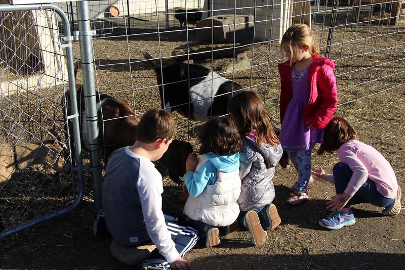 Secco Farm 076.JPG