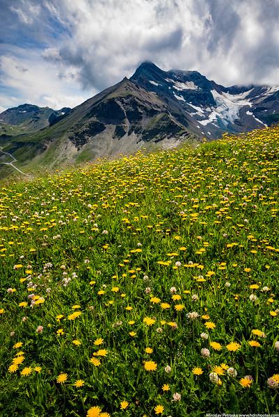 Austria_DSC7665-web.jpg