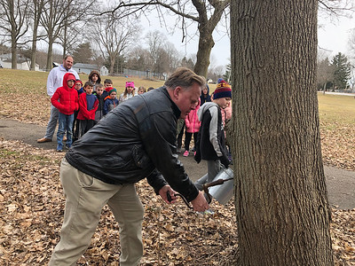 Franklin Elementary students tap into knowledge about maple syrup
