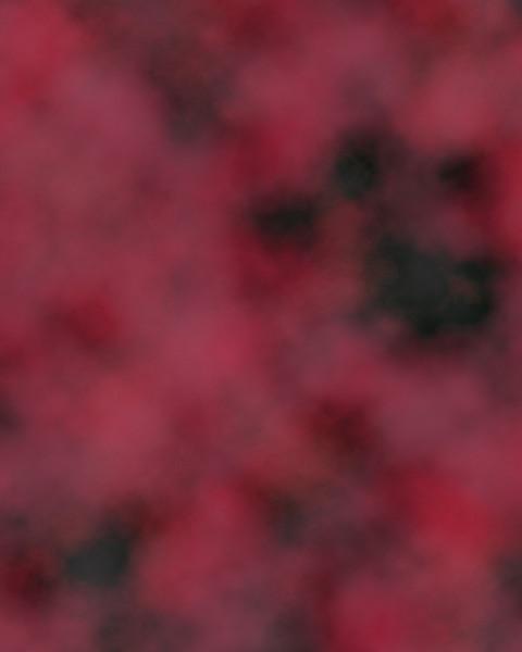 Scarlet.jpg