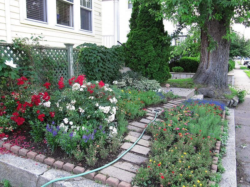 garden-2009-07-0778_std.jpg