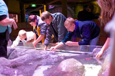 2013 TMP-M JH at KC aquarium