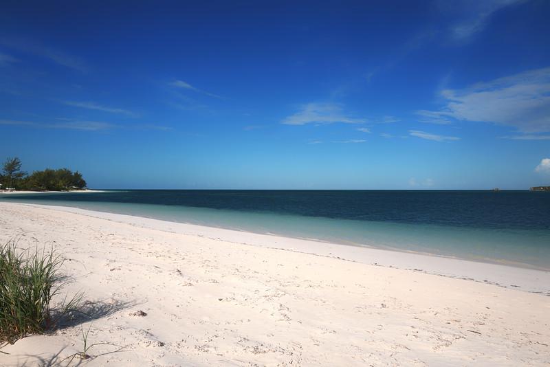 Bahamas-3.jpg