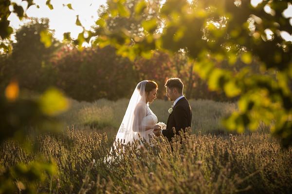 Renee and George wedding sneaks