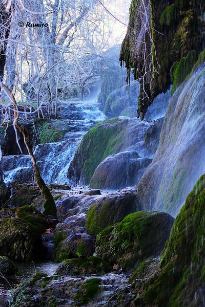 Gorman Falls IMG_1018.jpg