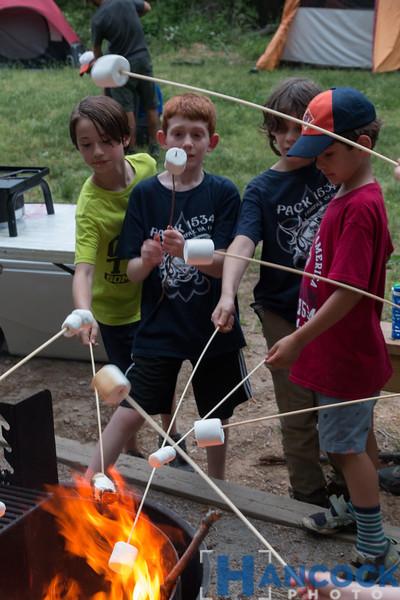 Cub Scout Camping Leeslyvania 2018-167.jpg