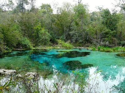 Florida: Ichetucknee