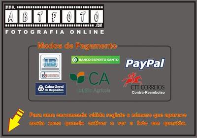 ESPORTASDERODAO2015P3ZENA