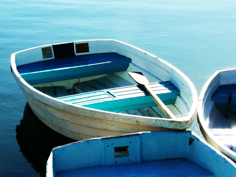Blue Dories.jpg
