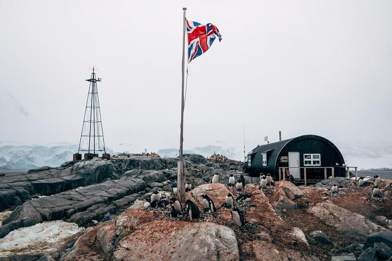 _MG_6576_20170121_Antarctica.jpg