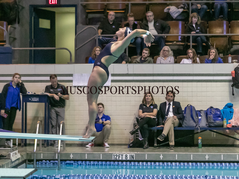 Swimming-diving vs Seton Hall_1310.jpg