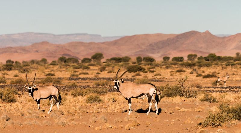 20140924-Africa-Day6-7-DSC00641.jpg
