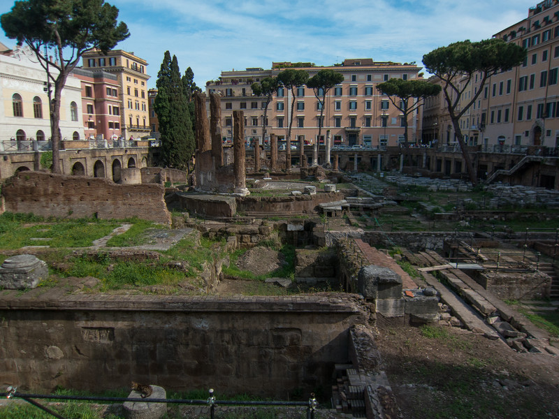 Largo di Torre Argentina - site of four ancient temples (4th to 1st century BC) and part of Pompey's Theatre where Julius Caesar was killed (they were temproarily using that space for Senate meetings while his Curia was being constructed). Currently, it is the site for a no-kill cat shelter (see immediate foreground).