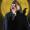 Count Dracula Mandrill