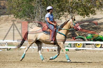 Rider 32