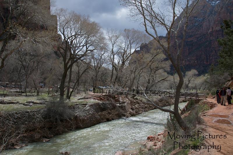 Zion National Park - back at Virgin River