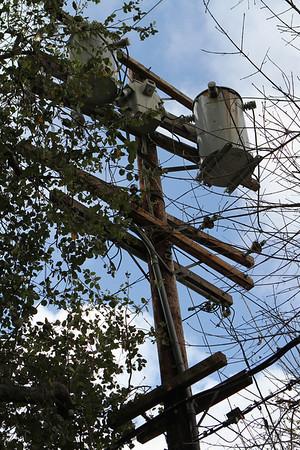 201202 Lawn Damaged By SCE