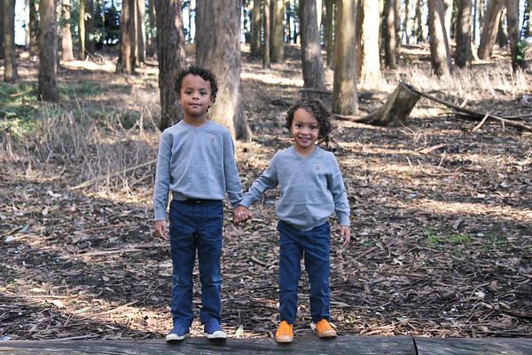 Presidio Wood Line Family Photo Session
