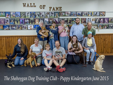 Puppy Kindergarten June 2015