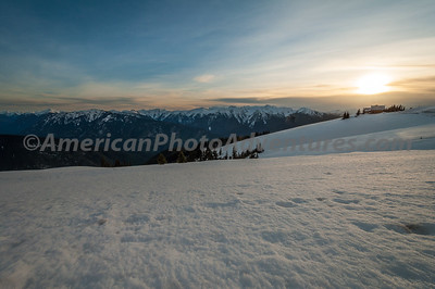Olympic National Park In Winter