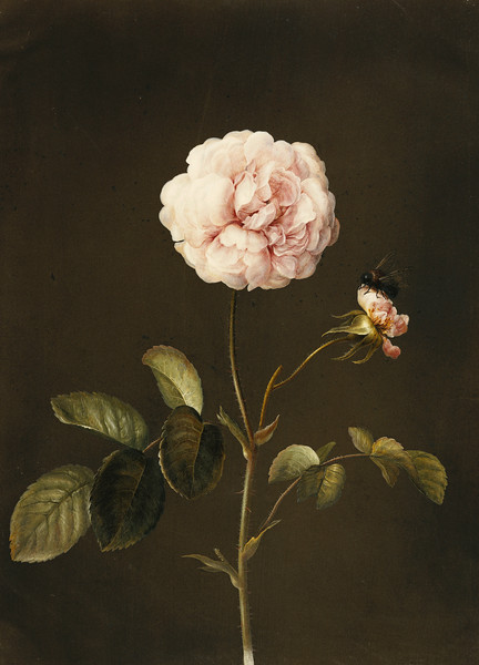 flowers-artifiziell
