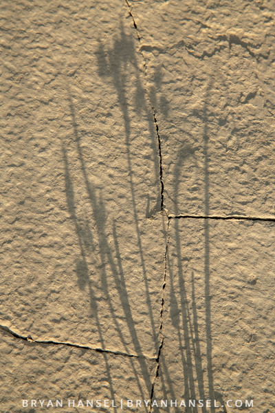 180611-406.jpg