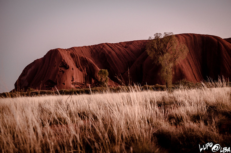 Australia-510.jpg