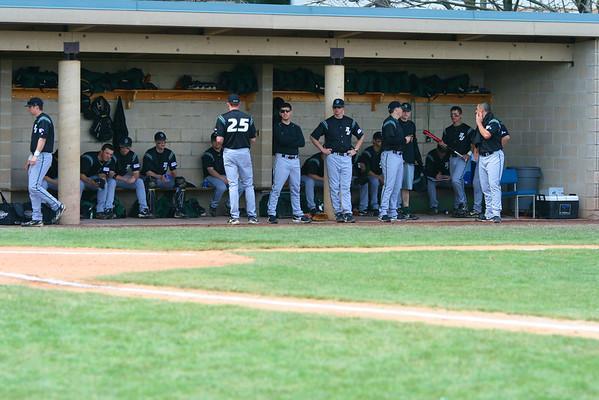 2008 Binghamton University Baseball