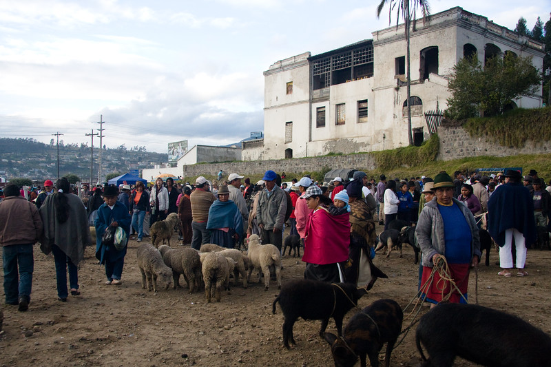 otavalo-animal-market_4890990792_o.jpg