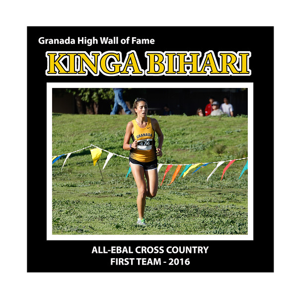 Bihari Kinga GHS XC All EBAL 1st Team 2016.jpg