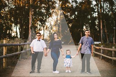 Crystal Gene - Family