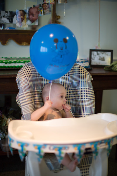 Gregory's 1st Birthday