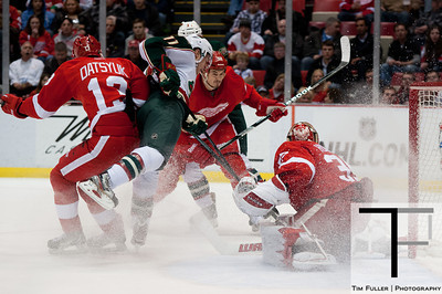 Minnesota Wild at Detroit Red Wings 03/20/13