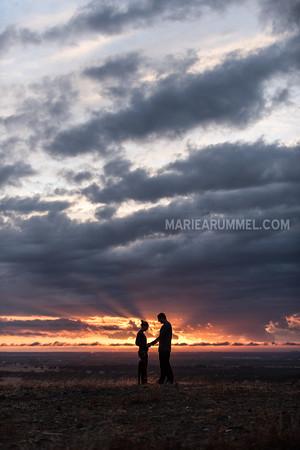 Trent and Suni: Proposal