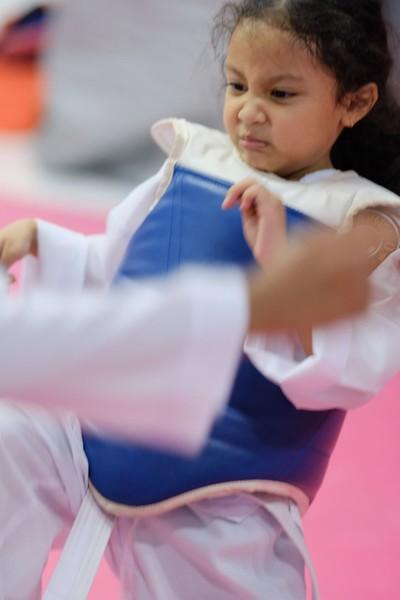 INA Taekwondo Academy 181016 182.jpg