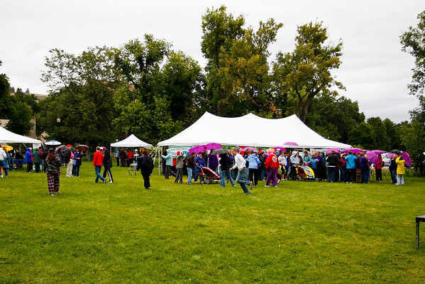 """""""Walks"""" for a Cause Community Events"""
