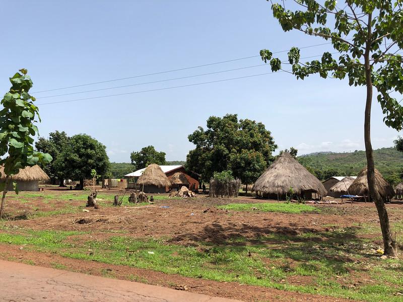 Guinea-10.jpg