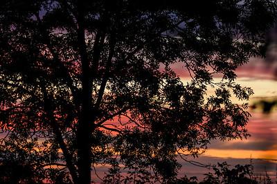Fitzwilliam Autumn Sunrise