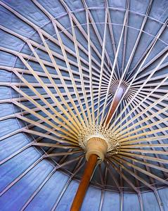 Oil Paper Umbrella © Christine Gibson (Larry Price Award - Best in Show)